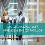 Las organizaciones aprenden en los pasillos
